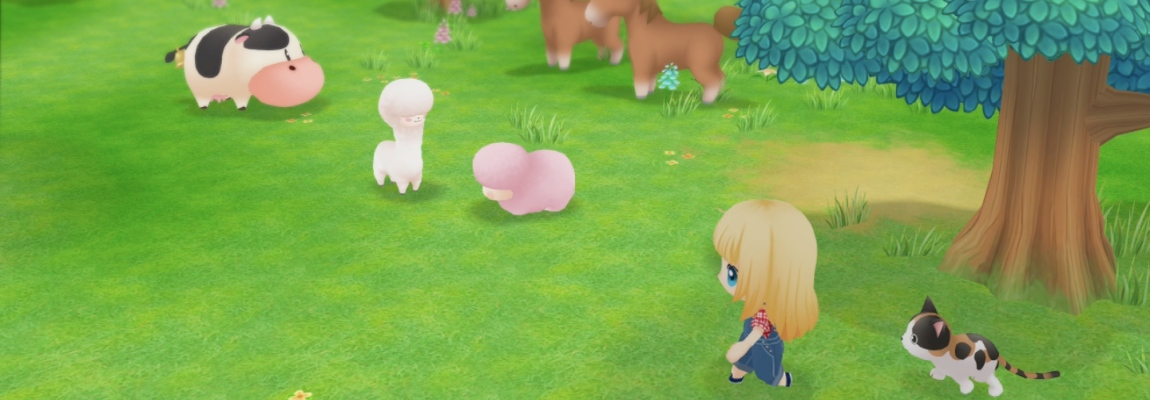 Story Of Seasons Friends Of Mineral Town Tipps Tricks Gamez